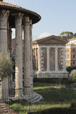 Temple of Hercules Victor, Rome Royalty Free Stock Images