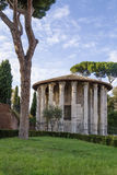 Temple of Hercules Victor, Rome Royalty Free Stock Photos