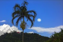 Temple on Hill, Palm Tree, Moon. Stock Photography
