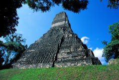 Temple I, Tikal. Temple of the Jaguar at Tikal Royalty Free Stock Photography