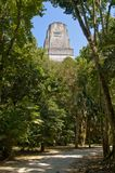 Temple III dans la jungle de Tikal Peten Images libres de droits