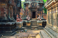 Free Temple In The Jungle Royalty Free Stock Image - 22868216