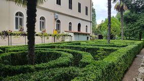 Temple island garden with green plants and palm trees royalty free stock images
