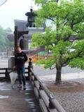 Temple japan. Naritasan temple raining beatiful Stock Images