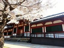 Sakura with Temple in Japan. Sakura in Japan temple Stock Photography