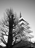 Temple in Japan, Tree and Pagoda Royalty Free Stock Photos