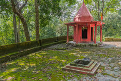 Temple in jungle Royalty Free Stock Images