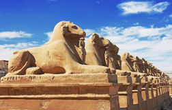 Temple of Karnak Stock Photos