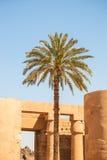 Temple of Karnak, Egypt Royalty Free Stock Photos