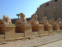 Temple of Karnak on the west bank of Egypt Royalty Free Stock Photos