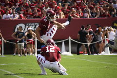 Temple kicker Brandon McManus Stock Images