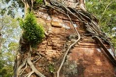 Temple Koh Ker Complex de landau de Prasat Images libres de droits