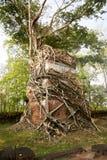Temple Koh Ker Complex de landau de Prasat Photographie stock