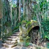 Temple ladder in Monkey forest, Ubud, Bali Royalty Free Stock Image