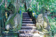 Temple ladder in Monkey forest, Ubud, Bali Royalty Free Stock Photos