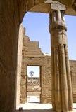 Temple of Luxor Stock Photos