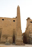 Temple of Luxor. Is Amon god in the vido when a sacrifice in the palace of the Nile Stock Images