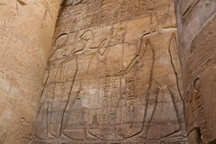 Temple of Luxor. Is Amon god in the vido when a sacrifice in the palace of the Nile Stock Image