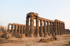 Temple of Luxor. Is Amon god in the vido when a sacrifice in the palace of the Nile Stock Photography