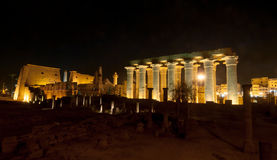 Temple of Luxor, Egypt at Night Royalty Free Stock Image