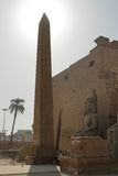 The Temple of Luxor in Egypt Royalty Free Stock Image