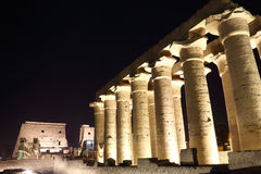 Temple of Luxor at night. Temple of Luxor is Amon god in the vido when a sacrifice in the palace of the Nile Stock Images