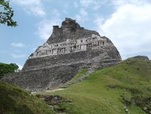 Temple maya archéologique Image stock