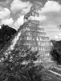 Temple maya de pyramide Photographie stock