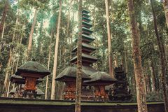 A temple in the Monkey forest. Bali, Indonesia royalty free stock photo