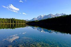 Temple Mountain reflection in Herbert Lake. Stock Photos