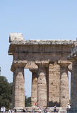 The temple of  Nettuno, ruins of Paestum Royalty Free Stock Images