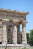 The temple of  Nettuno, ruins of Paestum Royalty Free Stock Photos
