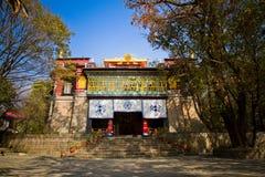 Temple of Norbulingka Institute of Tibetan Arts, Dharamshala, In Stock Images