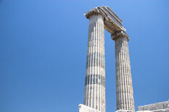 Free Temple Of Apollo Royalty Free Stock Photography - 33159787