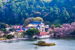 Free Temple Of The Tooth, Kandy, Sri Lanka Stock Photography - 41212812