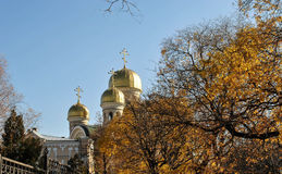 Temple. Orthodox church on a background of autumn leaves Royalty Free Stock Photo