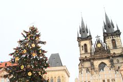 Christmas tree on Old Town Square in Prague Stock Image