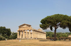 Temple paestum Royalty Free Stock Images