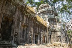 The temple is partially recovered from the jungle. Many ruins ha stock image