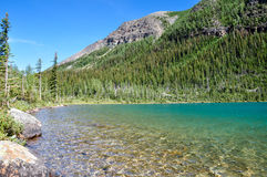 Temple pass trail in Banff National Park, Alberta, Canada Royalty Free Stock Images