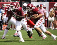 Temple quarterback Chris Coyer. Looks for running room Royalty Free Stock Photography