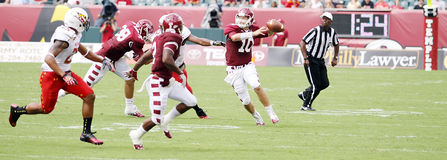Temple quarterback Chris Coyer Royalty Free Stock Image