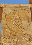 Temple of Queen Hatshepsut. Bas-relief of the falcon god of the sky, Horus wearing the crown of upper and lower egypt Royalty Free Stock Photo