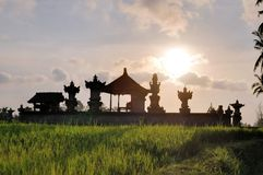 Temple in Rice paddies near Ubud, Bali, Indonesia Stock Photography