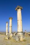 Temple romain de Volubilis Photos libres de droits