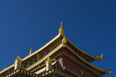 The temple roof Stock Image