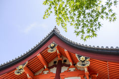 Temple roof with green  maple leaves Stock Images