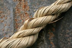 Temple rope. Rope around tree at temple Royalty Free Stock Photography