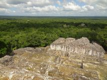 Temple ruin at Calakmul. A mayan archaeological site in the mexican state of Campeche royalty free stock photos