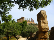 Temple and ruins agrigento sicily  Royalty Free Stock Photos